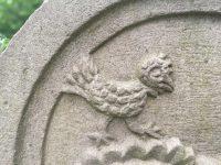 Vögel …